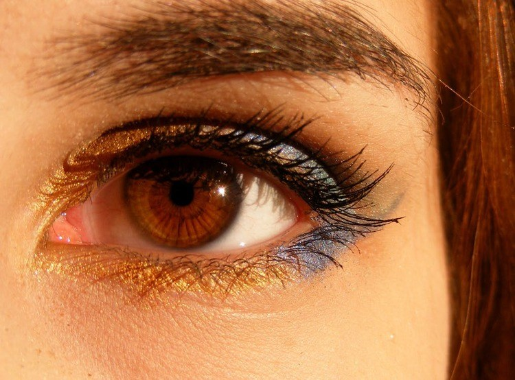 sparkling brown-brown-eyes
